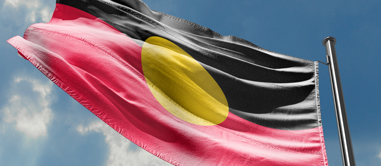 Indigenous Cultural Competency Masterclass 2021